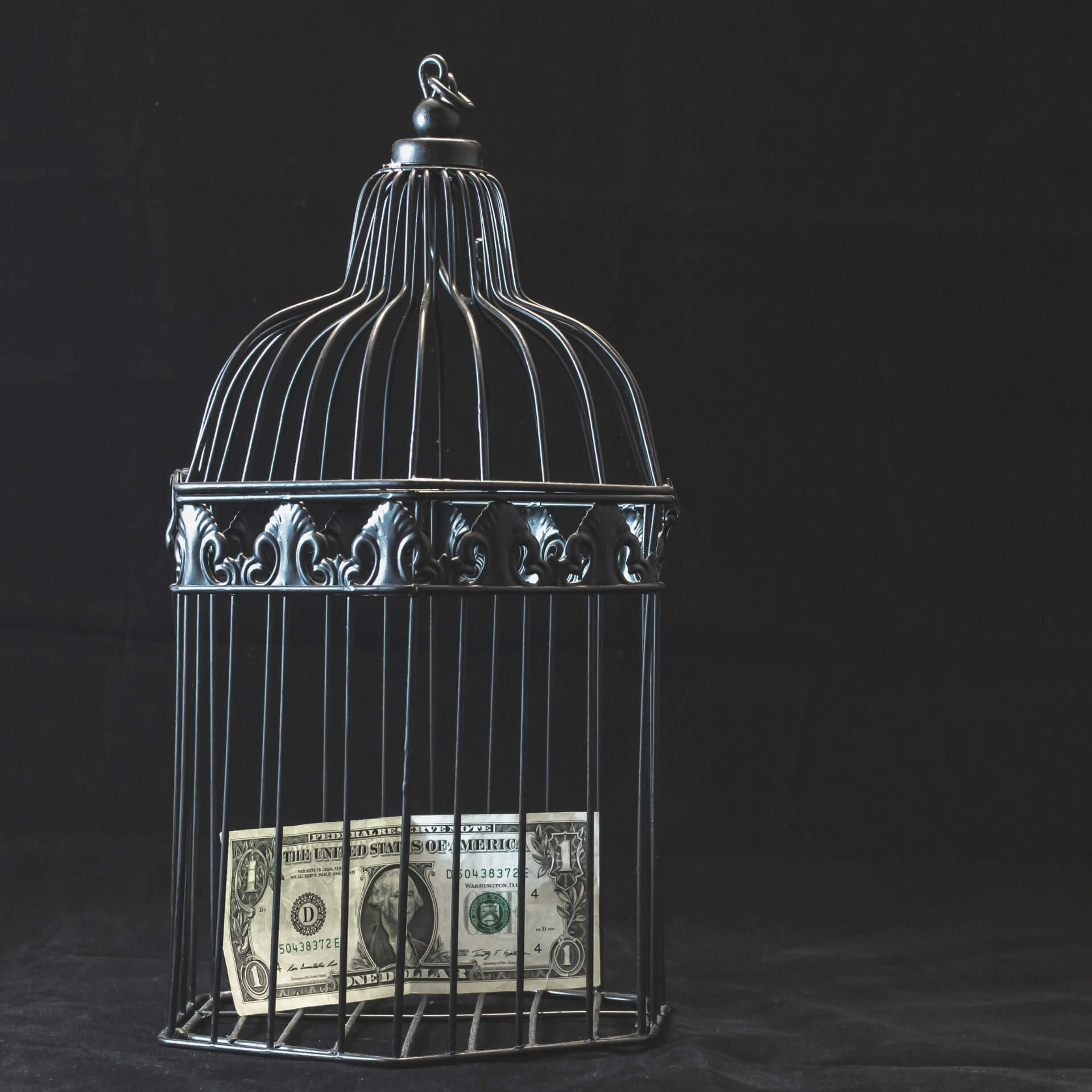Best Free Website: $1 bill trapped in a bid cage.
